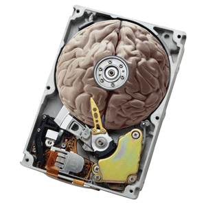 Brain within a Hard Disk